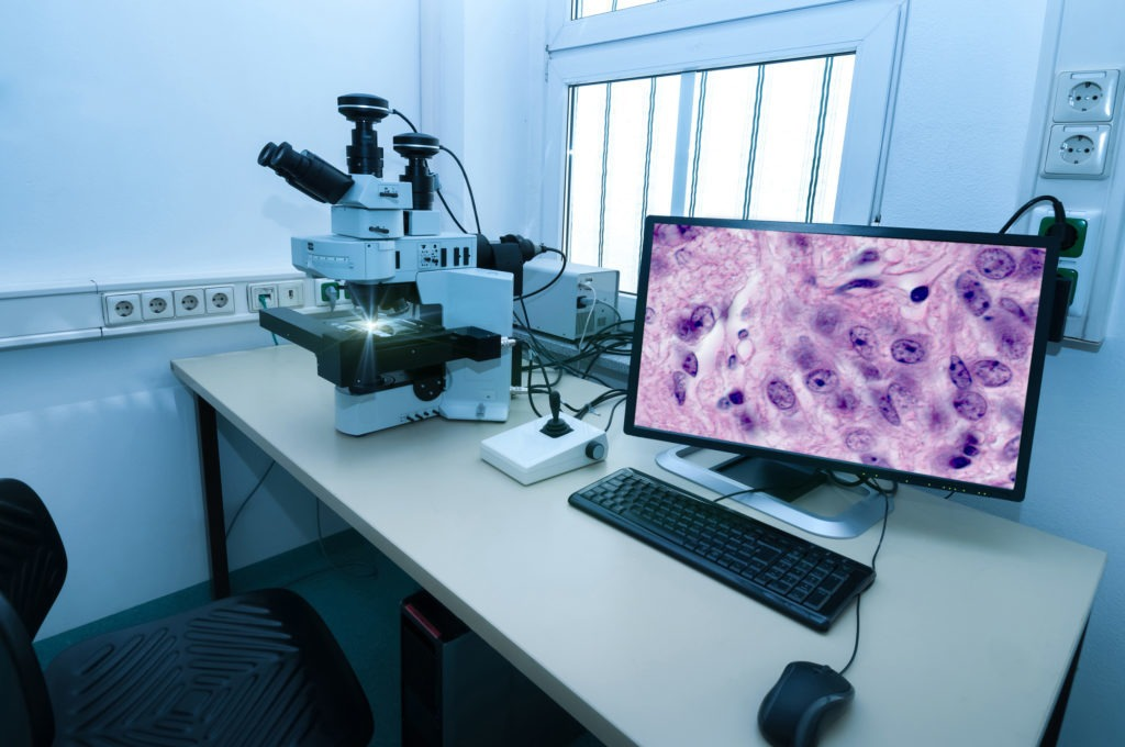 image of Digital Pathology