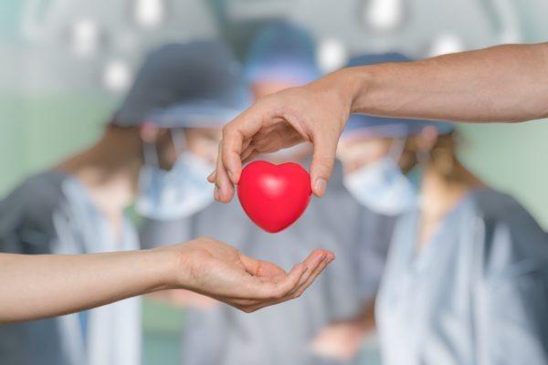 image of Telepathology Helps Make Organ Donations Safer