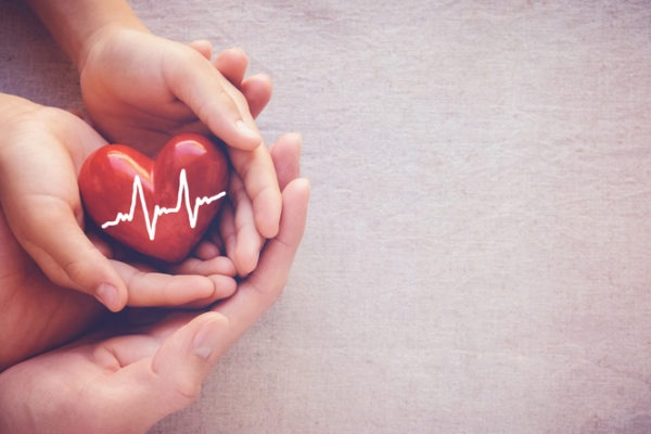 image of adult and child hands holiding red heart with cardiogram, health care love and family concept